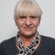 Brega Čović